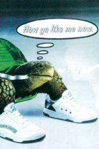 Turtles & Sneakers: Late 80's